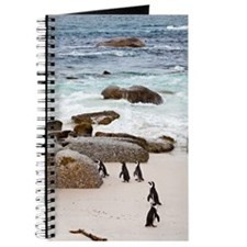 Black-footed African Penguins On The Beach Journal