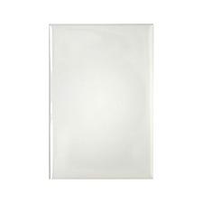 Black-footed African Penguins On  Rectangle Magnet
