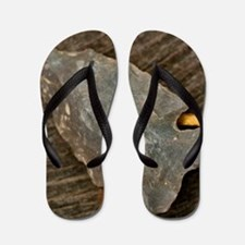 Cute Art photography Flip Flops