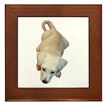 pup Framed Tile