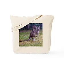 grey kangaroo Tote Bag