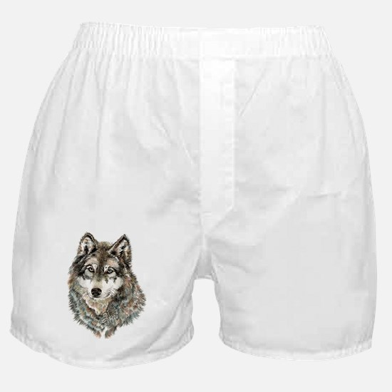 Watercolor Grey, Gray Wolf Animal Painting Boxer S