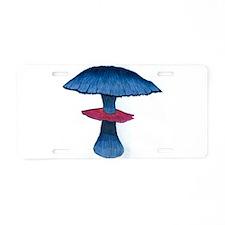 Blue Lagoon Aluminum License Plate