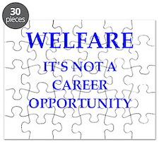 welfare Puzzle