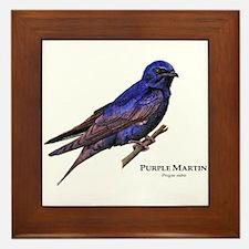 Purple Martin Framed Tile