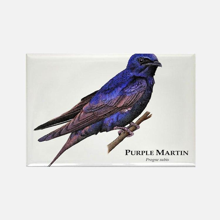 Purple Martin Rectangle Magnet
