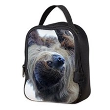 Sloth Neoprene Lunch Bag