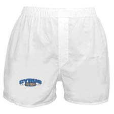 The Great Cyrus Boxer Shorts