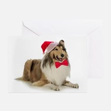 Santa Collie Christmas Cards (Pk of 10)