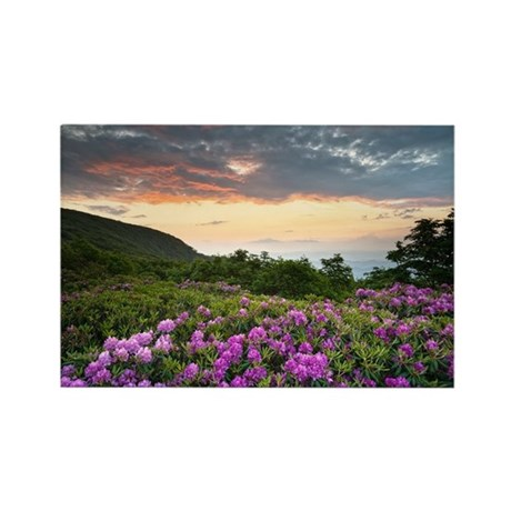 Blue Ridge Parkway Mountains Su - Rectangle Magnet