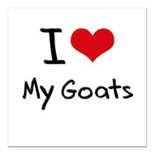 "I Love My Goats Square Car Magnet 3"" x 3"""