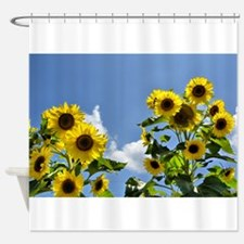 Sunflowers and Sky Shower Curtain