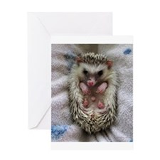 .bathtime hedgie. Greeting Card