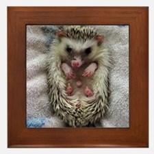 .bathtime hedgie. Framed Tile