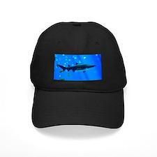 Black Tipped Shark Baseball Hat