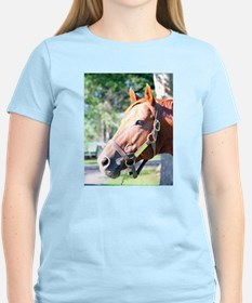 SECRETARIAT - 1973 Triple Crown winner T-Shirt