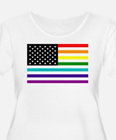 UNITED STATES OF EQUALITY RAINBOW FLAG Plus Size T