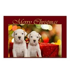 Merry Christmas Argentine Dogos Postcards (Package
