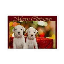 Merry Christmas Argentine Dogos Rectangle Magnet (