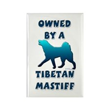 Tibetan Mastiff Silhouette Rectangle Magnet (100 p