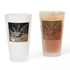 Skeleton Leg Tarantula Drinking Glass