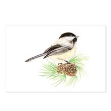 Chickadee Pine.png Postcards (Package of 8)