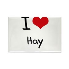 I Love Hay Rectangle Magnet