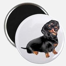 Black-Tan Dachshund Magnet