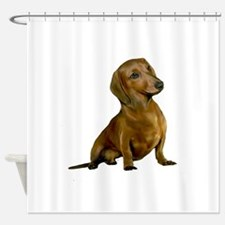 Brown/Red Dachshund Shower Curtain