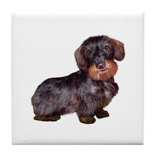 Wire Haired Dachshund (#1)q Tile Coaster