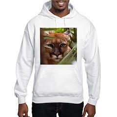 Cougar Aspen Echo Hoodie