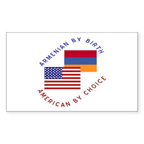Armenia Birth USA Choice Rectangle Sticker