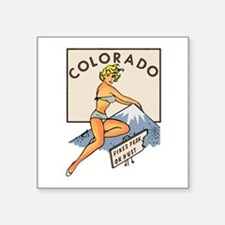 Colorado Pinup Sticker