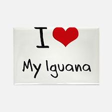 I Love My Iguana Rectangle Magnet