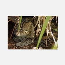 Fishing Cat Rectangle Magnet