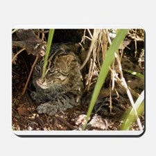 Fishing Cat Mousepad