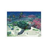 Turtle rugs 5x7 Rugs