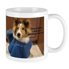 Neutering Small Mugs
