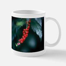 """""""Kona Coffee"""" Mug"""