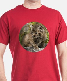 Bobcat Kitten T-Shirt