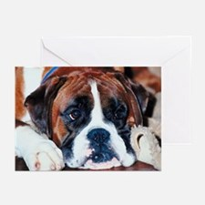 Boxer Puppy Greeting Cards (Pk of 10)