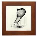 Thuringer Pouter Pigeon Framed Tile