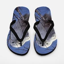 Snowy White Owl Flip Flops