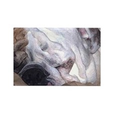 Close-up of Sleeping Bulldog Rectangle Magnet