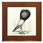 Swing Pouter Pigeon Framed Tile