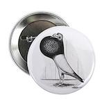 Starwitzer Pouter Pigeon Button