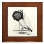 Starwitzer Pouter Pigeon Framed Tile