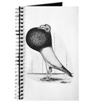 Starwitzer Pouter Pigeon Journal