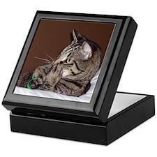 Tabby Cat II Keepsake Box