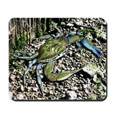 Blue Claw Crab Mousepad